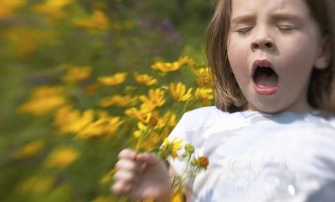 Jak zbadać wiosenne alergie?